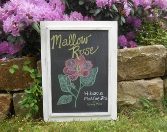 Extra Large Real Slate Chalkboard in Vintage Wood Frame Shabby White Chippy Paint 31 1/8 x 23 1/8 Menu Board Wedding Sign School Teacher