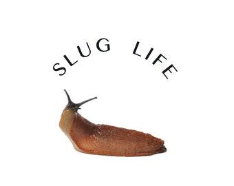 Slug Life Sticker