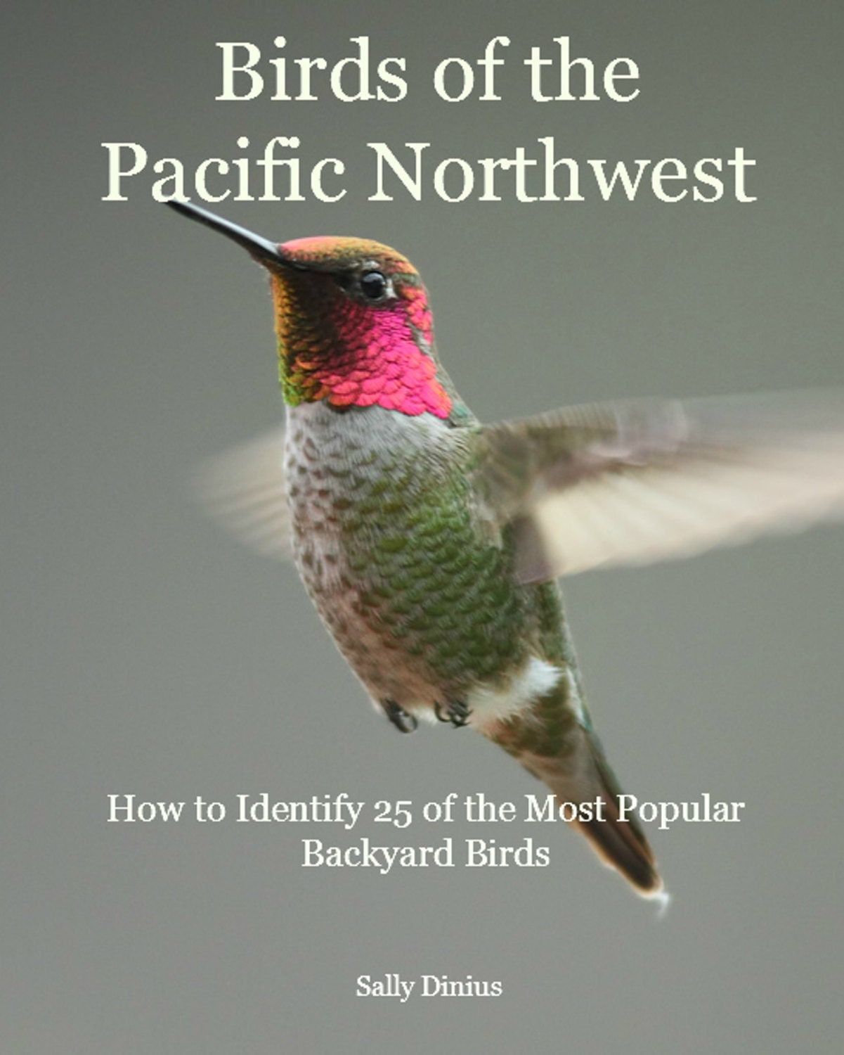 Birds of the Pacific Northwest: How to Identify 25 by ...