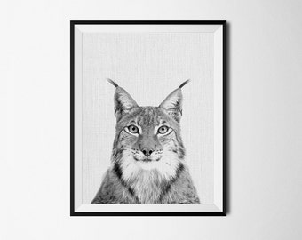 bobcat, animal art, animal print, nursery print, nursery art, nursery decor, lynx print, lynx art, animal poster, lynx poster, wall decor