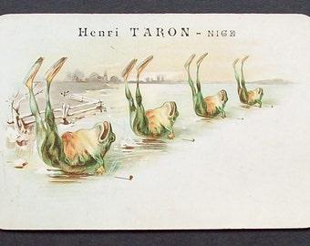 French Advertising postcard Henri Taron, Nice with frog design.