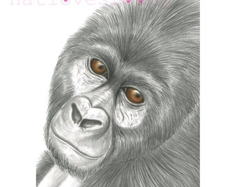 Gorilla  giclee print/ gorilla fine art print/  gorilla graphite drawing