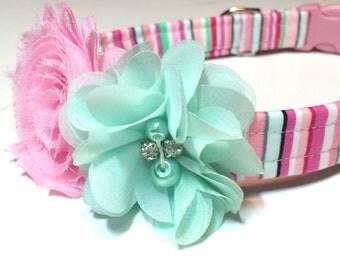 Spring Fling Dog Collar ~ Girl Dog Collar ~ Handmade Dog Collar