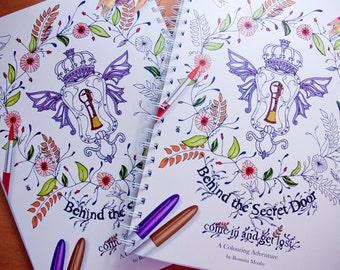 Behind the Secret Door colouring book