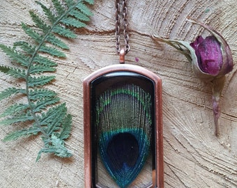 Locket, peacock feather necklace, peacock feather