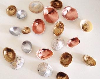 Mixed set of painted decorative shells