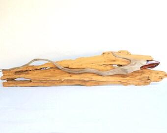 Driftwood Shark, Driftwood Fish, Wall Art