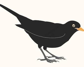 Instant digital download. Original illustration of a Blackbird by Thomas Harrison