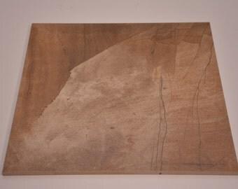 Dolce Vita Teakwood 13x13 Tile (DOTWBR101LR)
