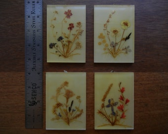 Set of 4 Lucite and Dried Flowers Wall Decor ~ Walter Frey ~ Luzern, Switzerland