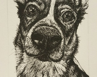 Custom Dog/Pet Portraits- Drawing or Painting