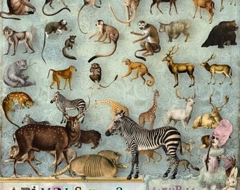 Animals vol.2 - 3 x Digital Collage Sheet ATC, .png - itKuPiLLi - Printable, Instant download