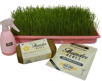 Complete Wheatgrass growing kit, Heavy Duty Pink Growing trays, Non-GMO Seed, Organic Coco Coir, Organic Fertilizer, Instructions (Pink)