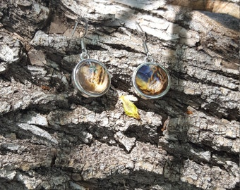 Silver Round Tortoise Shell Earrings