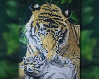 Mom knows best. Colour Pencil Tiger Art