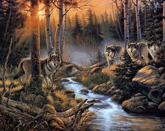 Beautiful Wolves Canvas Print