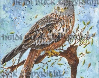 Red Kite Greetings Card