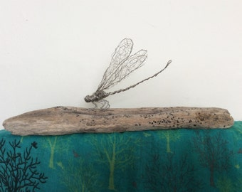 Wire dragonfly with driftwood stand