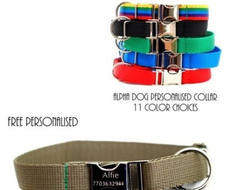 Metal Engraved Buckle Dog Collar - Personalised