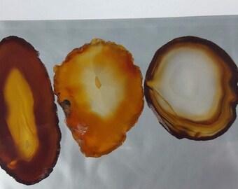 Natural Brazil Agate Slices Geode Polished Slab Quartz Lot (5) - N6