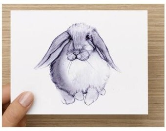 Note Cards-Rabbit Note Cards 2