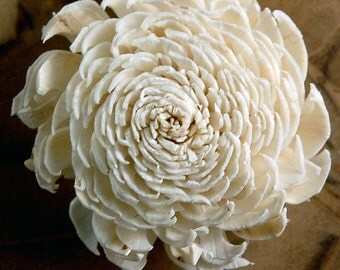 Pack of 12 Sola Mums Flowers, 2 Inch Flowers, Sola Flowers