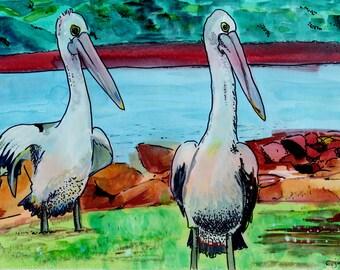 Pelican Card.