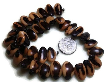 Nut Beads, Natural Beads, Tagua Nut Beads, Jewelry Supplies, Natural Nut Beads, Tagua Beads, Beading Supplies, Organic Beads Vegetable Ivory