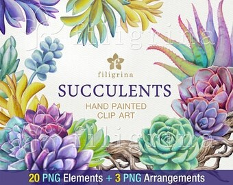 Succulents WATERCOLOR clip art. 20 Floral PNG elements, 1 paper texture background, 3 ready to use digital arrangements. Read about usage
