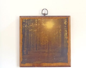 Vintage forest scene shellacked wood art / wooden art / sunset in the woods wall hanging