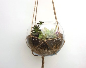 Hanging Terrarium gift, diy Terrarium, Succulent Terrarium, DIY, Glass Terrarium, Succulent, Succulent Garden, birthday gift
