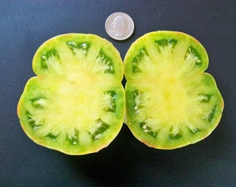 Heirloom Tomato- Aunt Ruby's German Green- 79 day GREEN Indeterminate- 25 seeds