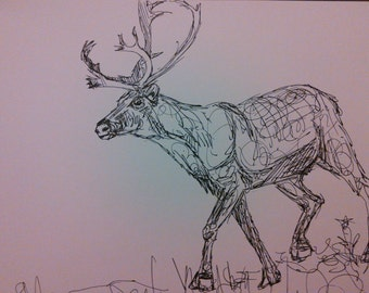 CUSTOM Ink Drawing