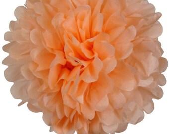 Peach Tissue Pom Pom's