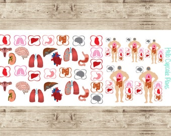 Organs and Organ Icons Planner Stickers