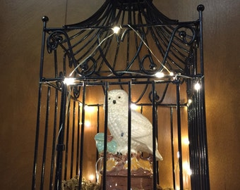 BC-101 Lighted Owl Hanging Birdcage