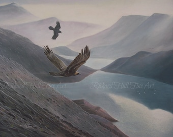 Golden Eagle Mobbed By Raven Scotland Original Painting Acrylic On Canvas 2012 Richard Hull Fine Art
