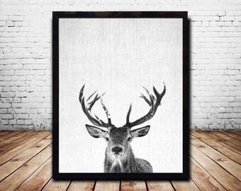Print download Wall Art Print Snow Deer Print Deer Antlers Stag Print Animal Print