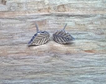 Fine silver beech leaf stud earrings