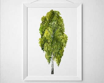 Birch tree poster Watercolor art Floral print Birch print ACW828