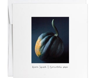 Acorn Squash Greeting Card- Veggie- Handmade Cards - Stationery - Gift Cards - Photography- Envelope - Spring - Holiday - Mothers Day