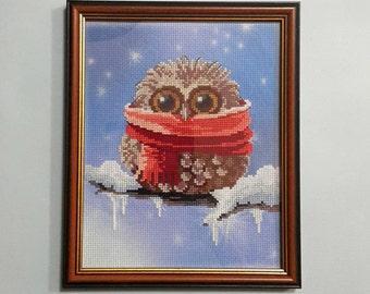 Winter Owlet