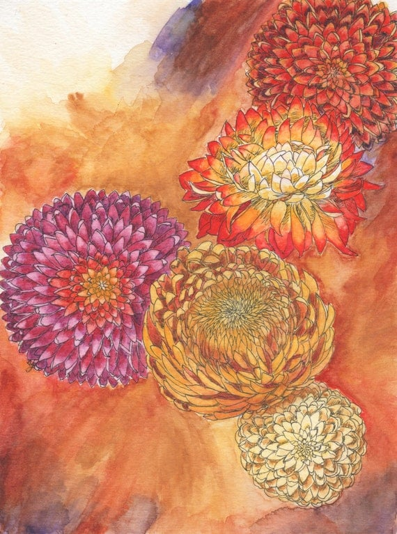 November Birth Flower - Chrysanthemums by Blazing Star Studio
