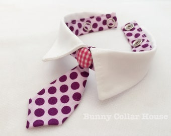 Purple tie collar, pet clothing, bunny collar, pet accessories, rabbit clothing, cat clothing, collar