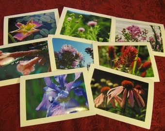 Blooming -- photo card collection
