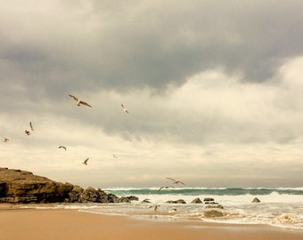 Seaside - Seaside Photo - Seagulls - Seagulls Photo - Sea - Sea Photo - Beach - Coast - Digital Photo - Digital Download - Home Decor