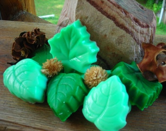 Leaves Guests Soaps w/ Shea Butter BULK