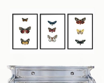 Vintage Butterflies and Botanical Print Set of 3 - Giclee Prints, Antique Botanical Prints, Wall Art, Prints, Posters, Butterfly Prints