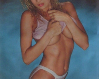 Traci Lords 23x35 Out Of The Blue Poster 1987 Pin Up Girl