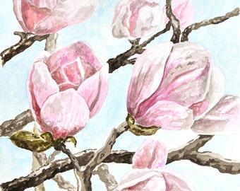 Watercolor painting, magnolia, original,handmade